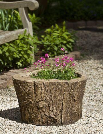 tronco maceta | tarea pendiente | pinterest | troncos, macetas y
