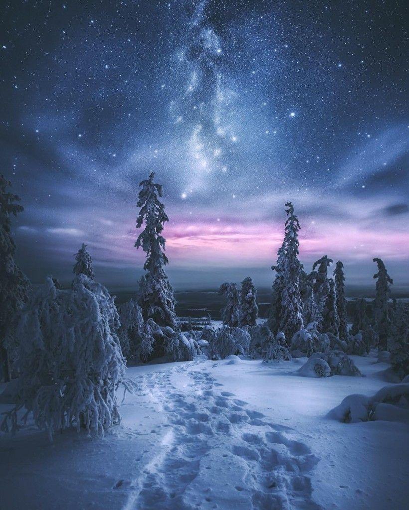 звон благовест лес зимой и сказка фэнтези фото надежные