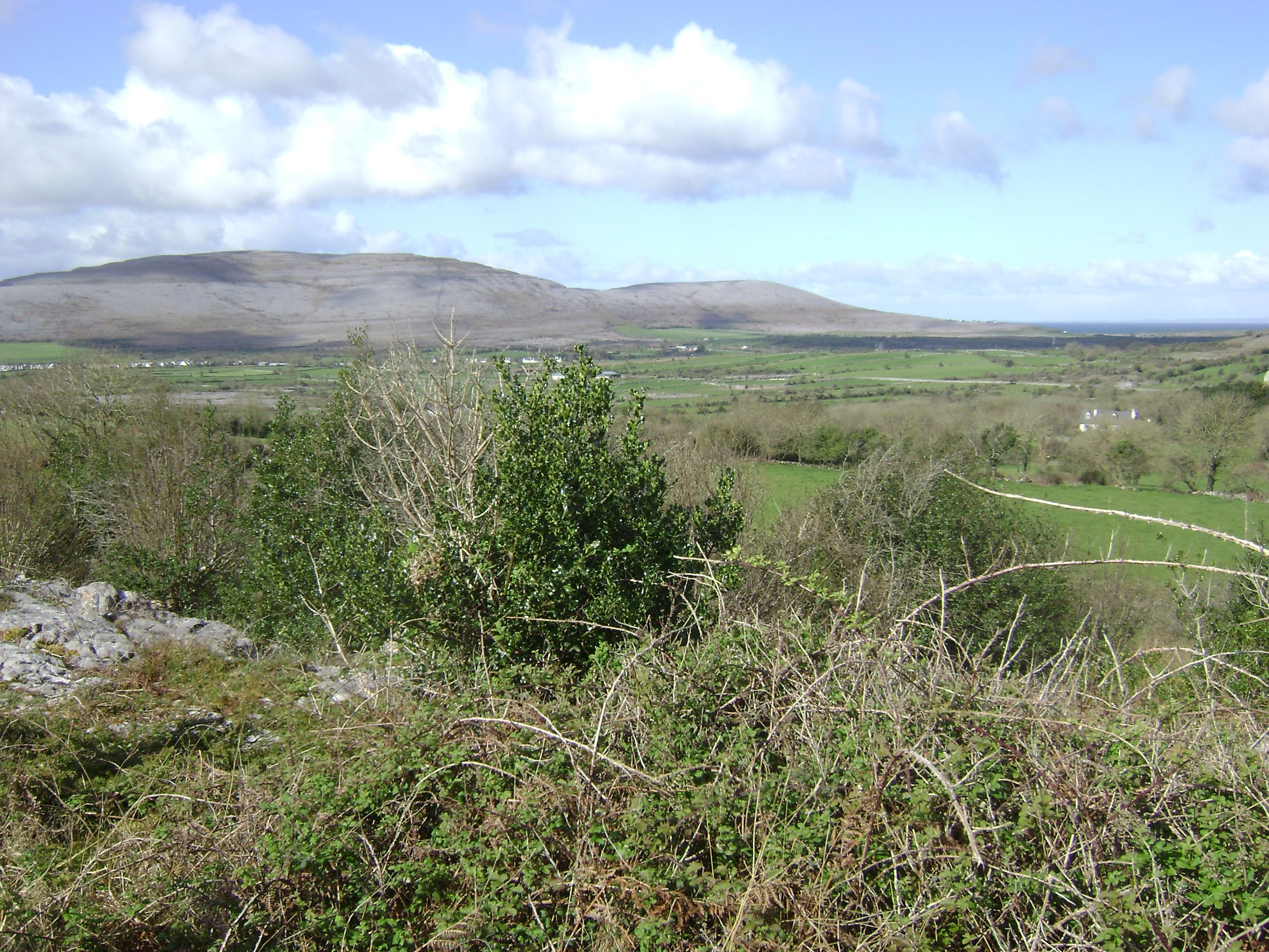 The Burren, County Mayo, Ireland.  Photo by Alexandra Simone