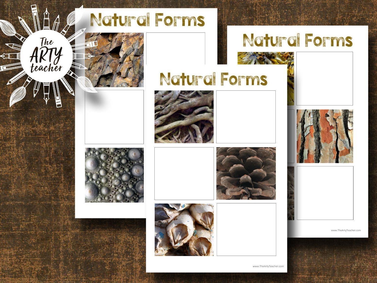 Natural Forms Worksheets