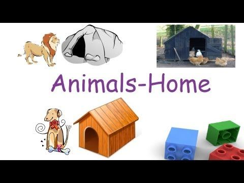 Matching animals to their home worksheet Free preschool