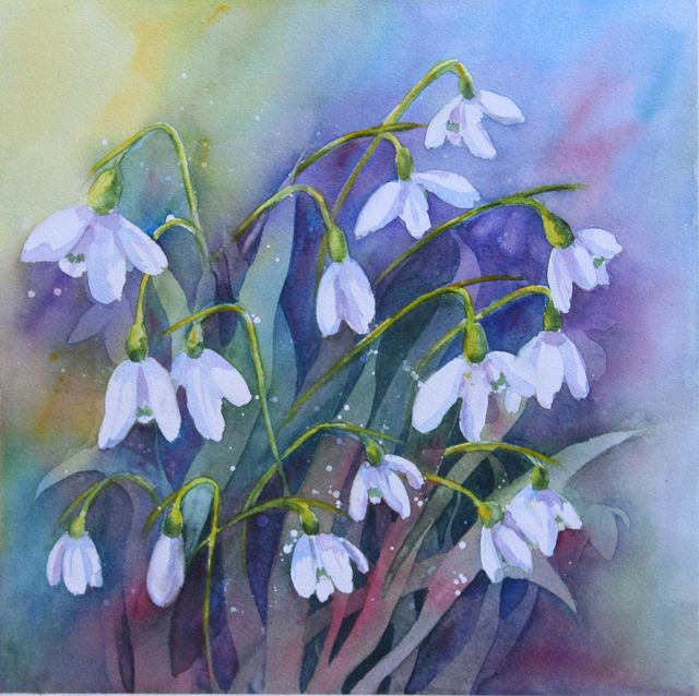Snowdrops Flower Art Watercolor Flowers Painting