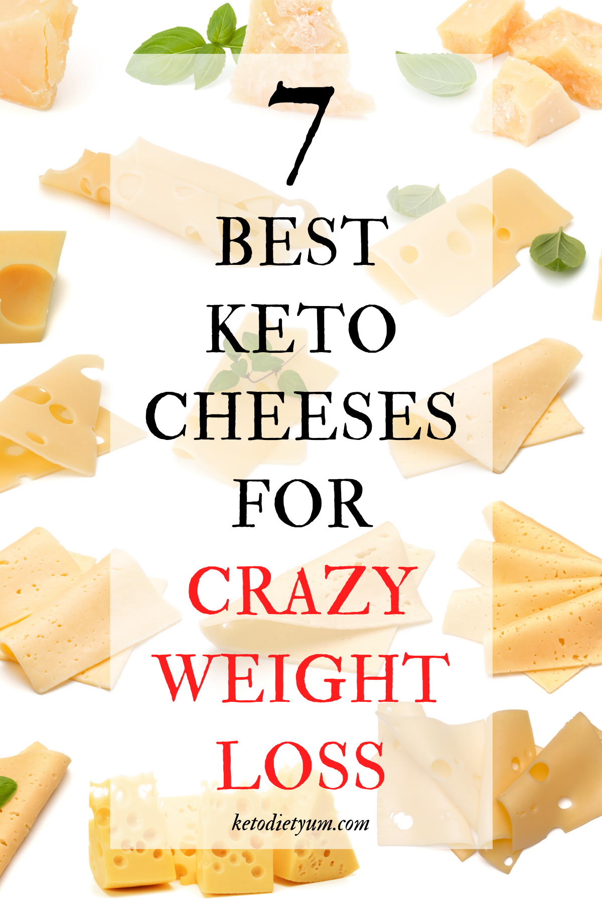 cheese on keto diet