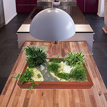 Begrüne deinen Arbeitsplatz! Ein Miniaturgarten bringt Ruhe und Atmosphäre :)  Details dazu hier: http://amzn.to/2ffcjsa