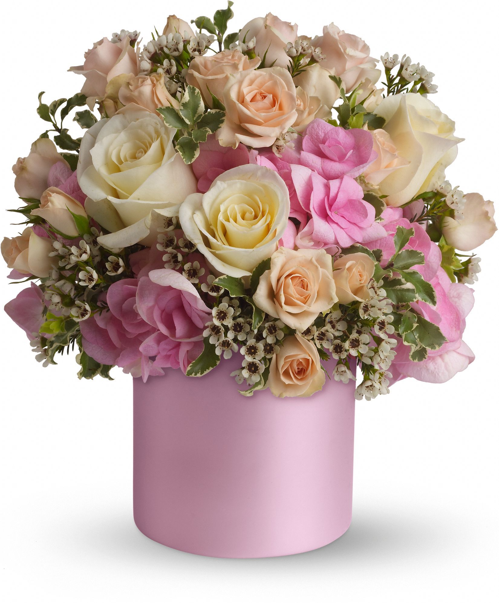 Telefloras blushing beauty box pinterest flowers floral make her blush with the soft pink innocence of this traditional bouquet a shimmering satin pink cylinder holds feminine blooms in shades of soft pink and izmirmasajfo Images