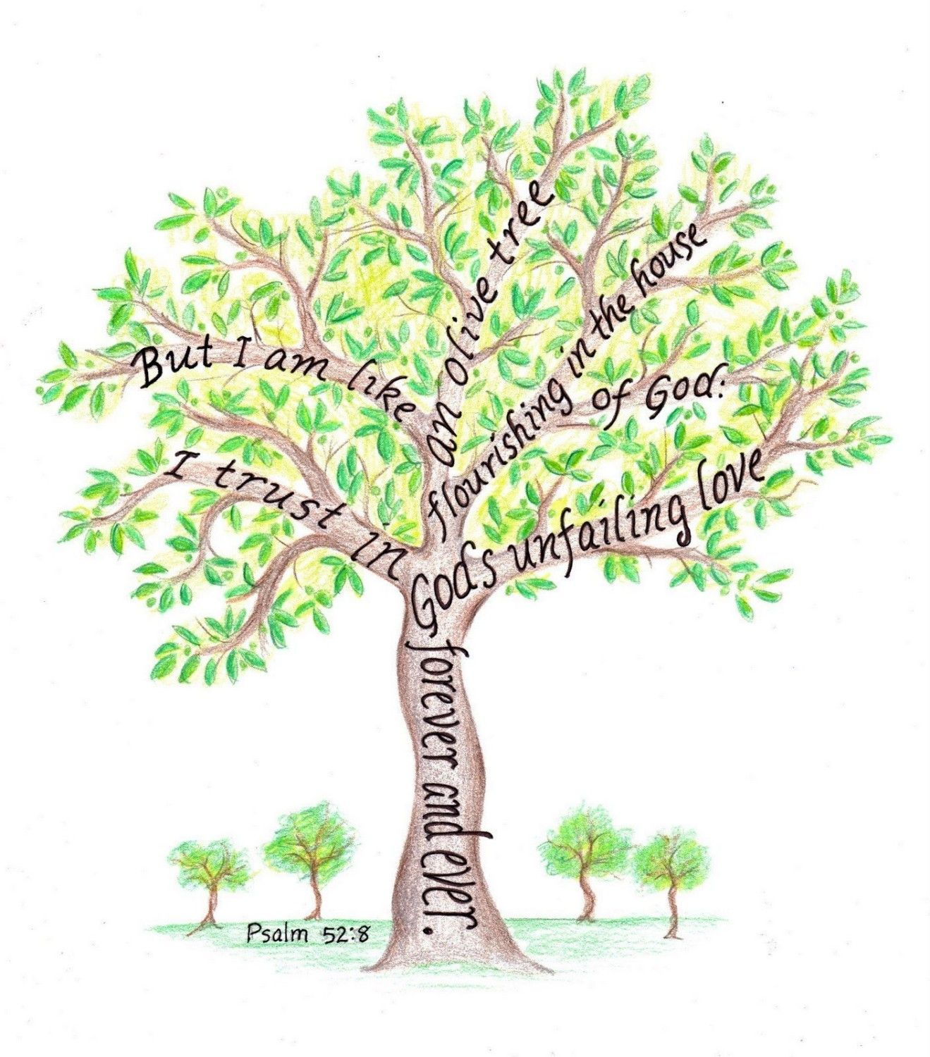 Tree pictures with scripture verses | Olive tree drawing ...