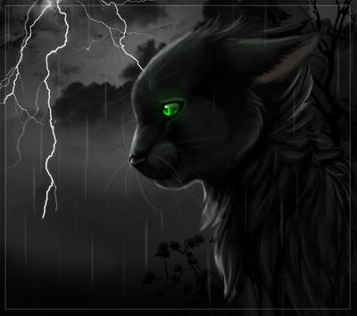 Výsledek obrázku pro warriors cats hollyleaf
