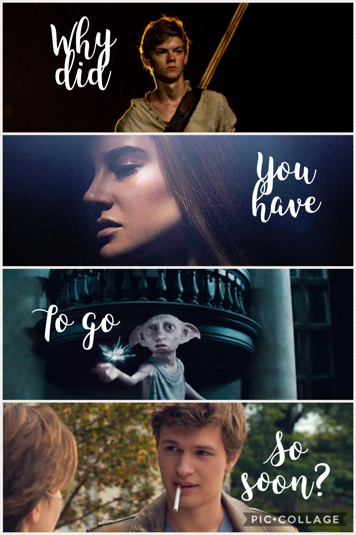 The Maze Runner Divergent Harry Potter The Fault In Our Stars Book Fandoms Book Memes The Fault In Our Stars