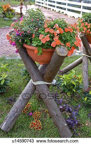 Flores potted, colocar, ligado, madeira, prateleira, jardim Banco de Imagem #jardineríaenmacetas