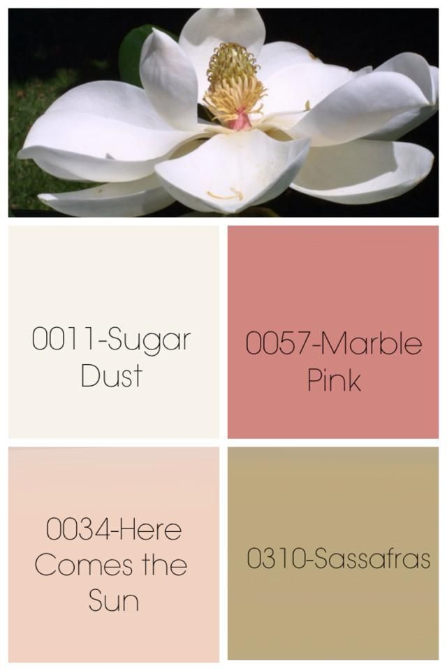 Color Scheme Would Be Great For Magnolia Web Page Logo Pamphlets Everything With A Touch If Rustic Burlap A Interior Design Art Magnolia Flower Paper Design