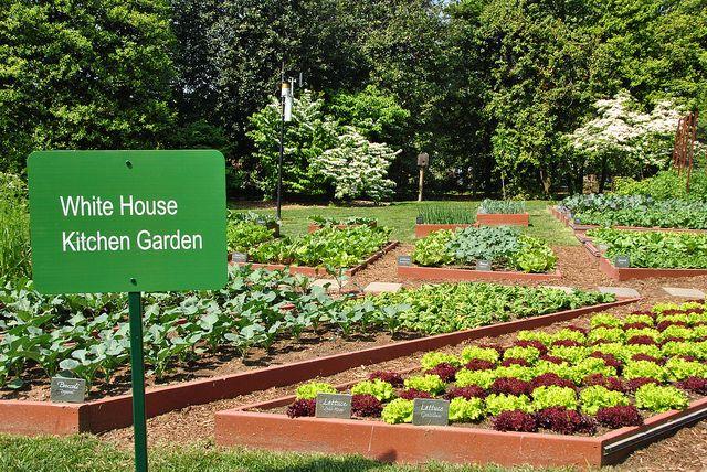Ultimate Kitchen Garden Planner White House Garden Kitchen Garden Garden Layout Vegetable