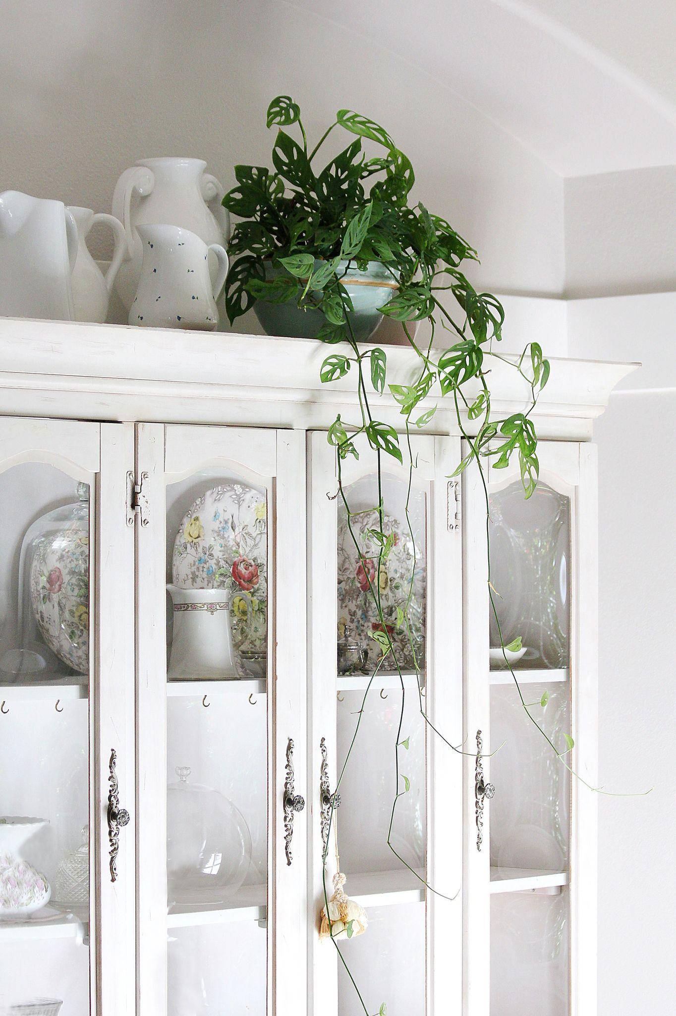 kuhles wohnzimmer von petz schönsten images und aaacadecdfdd