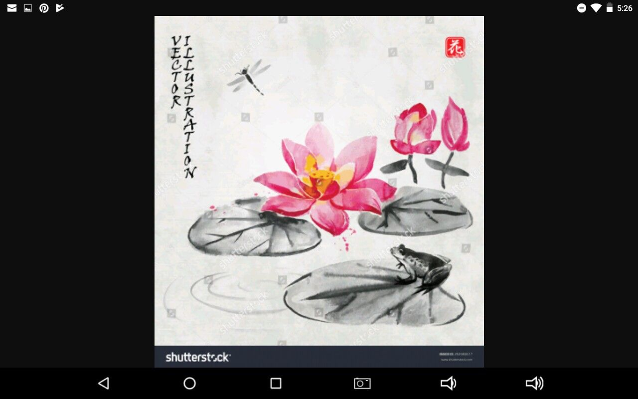 Lily Pads With Lotus Flowers Water Lilies Pinterest Lotus