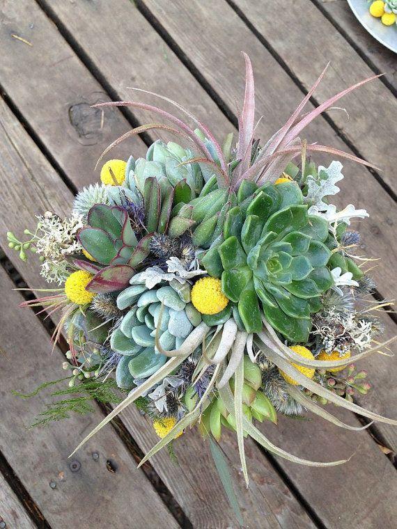 Bridal Bouquet Air Plants And Succulents With Craspedia Blue Thistle Lichen