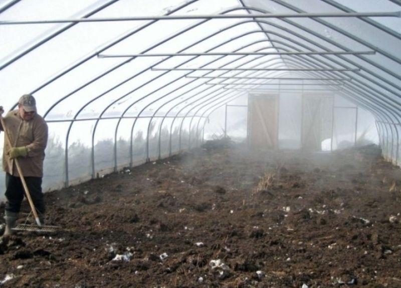 как обработать теплицу весной перед посадкой томатов