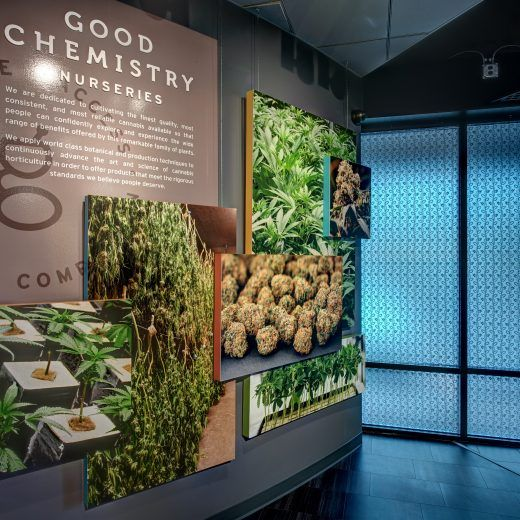 The Nursery Wall Display At Good Chemistry In Aurora Co Interiors