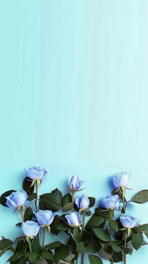 Background Blue Flowers Fondos Phone Blue Flower Wallpaper Flower Background Wallpaper Blue Flowers Background