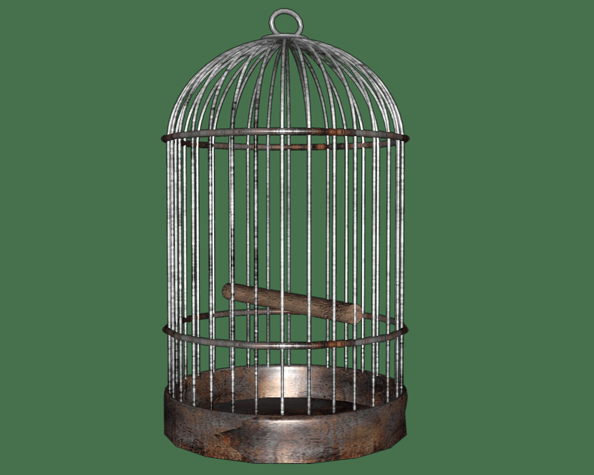 Bird Cage Jaulas Png Goticas