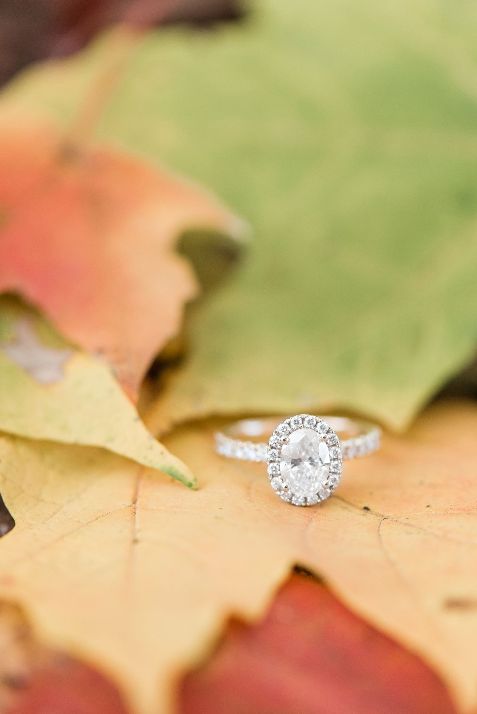 richmond-virginia-carillon-byrd-park-and-browns-island-fall-engagement-session-photo_7109.jpg