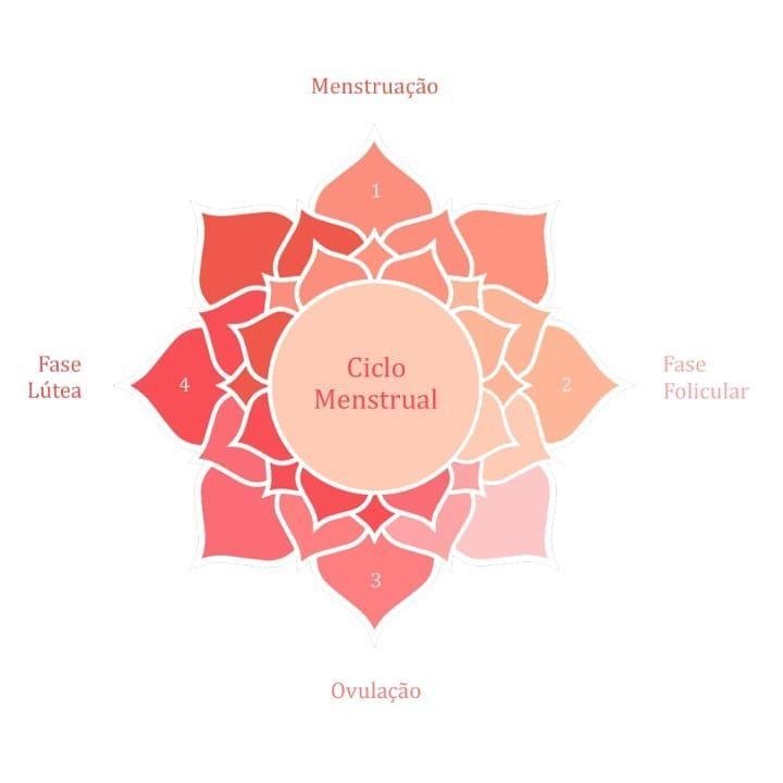 ciclo menstrual fases dias fertiles