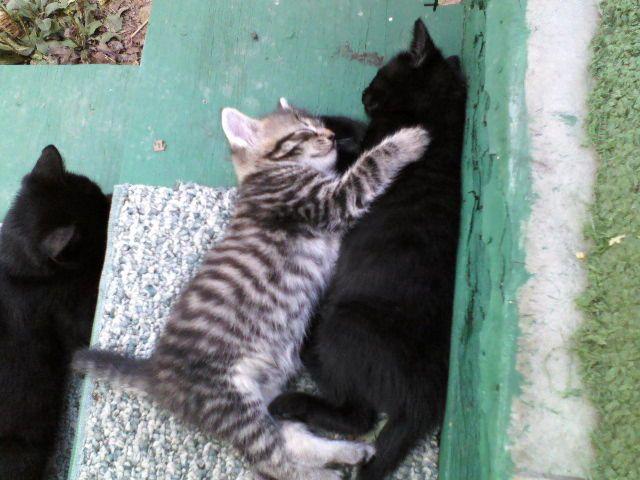 Sisterly Love!!!