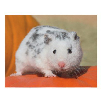 Cute Syrian Hamster White Black Spotted Funny Pet Faux Canvas