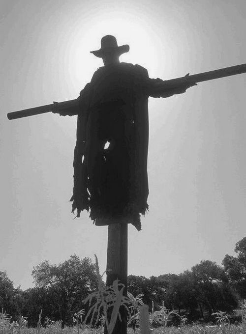 Jeepers Creepers Films Pinterest Halloween, Scary halloween