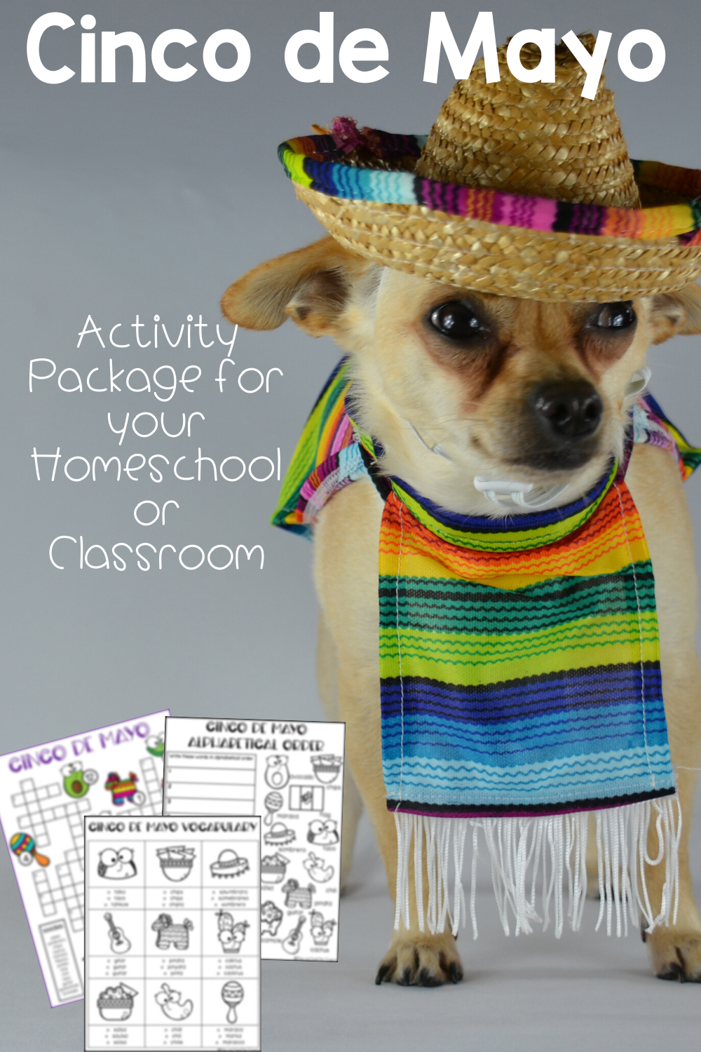 hight resolution of Cinco de Mayo Worksheets   Cinco de Mayo Activities   Cinco de mayo  activities