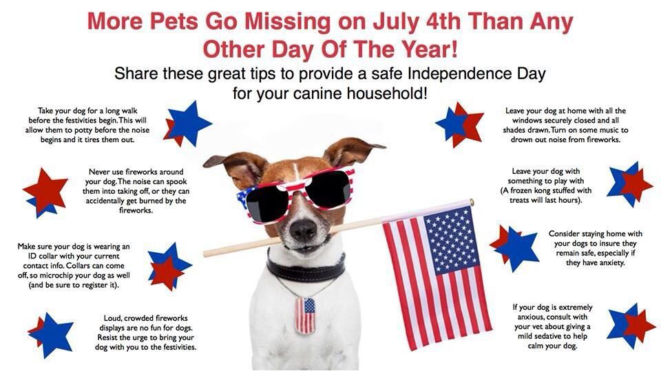 Protect Your Pets This 4th Of July Pet Calming Pet Safety Pet Safe