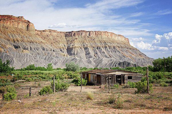 Desert Abode