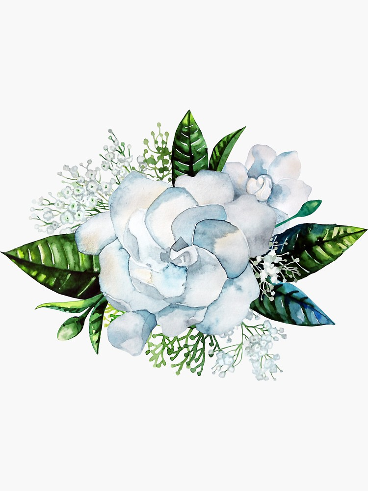Watercolor Gardenia And Gypsophila Vignette Sticker By Ekaterina Glazkova In 2020 Flower Drawing Flower Art Garden Tattoos