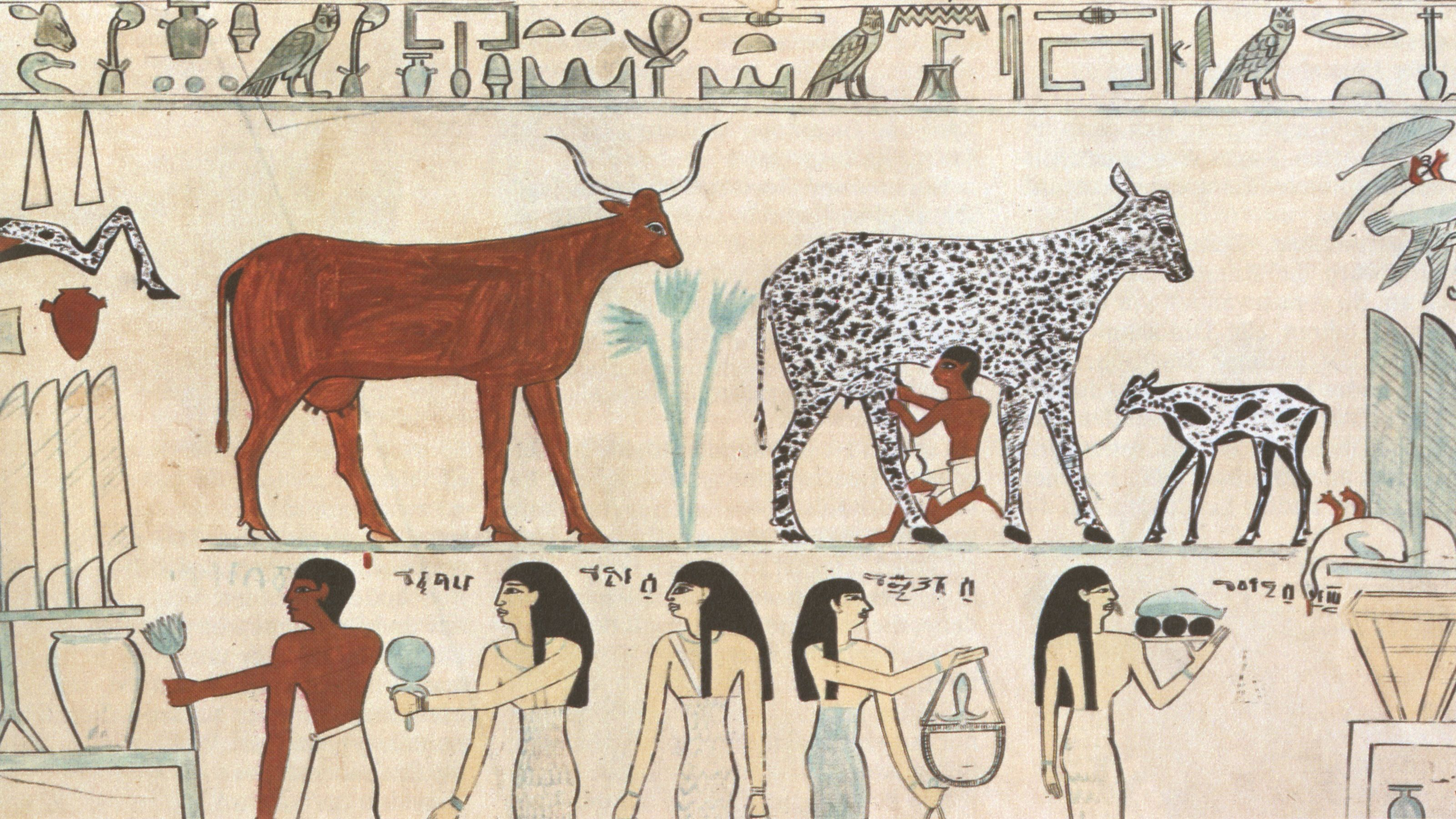 Plant Animal Domestication In Geography Egypt Animals Ancient Egypt Egyptian Art