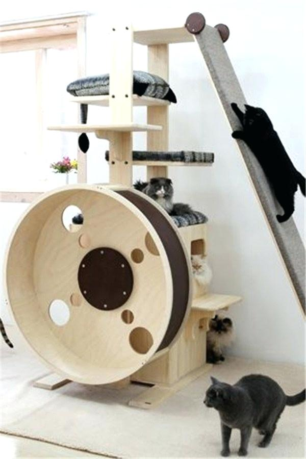 Large Cat Tree Unique For Cats House Trees Amazon Uk Australia Cat Room Cat Furniture Cat Playground