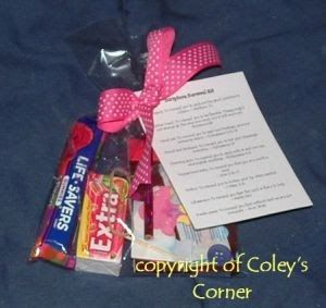 """I made a """"Scripture Survival Kit"""" for my secret sister at church. It turned out very cute and was very simple!!       In case you can't read..."""