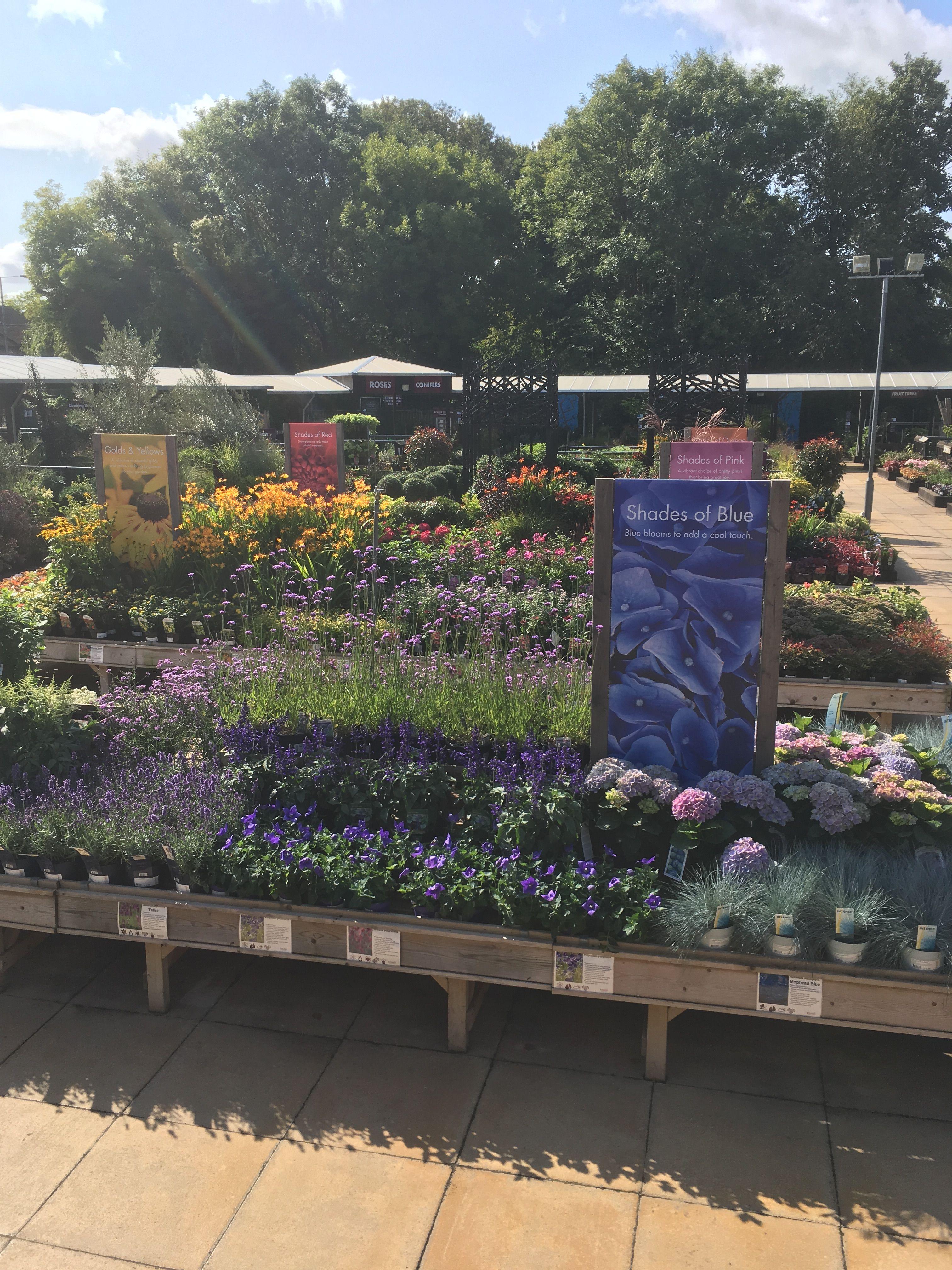 perennials shrubs display benches at squires garden