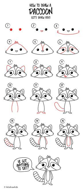 How to draw a Raccoon. Easy drawing, step by step, perfect ...