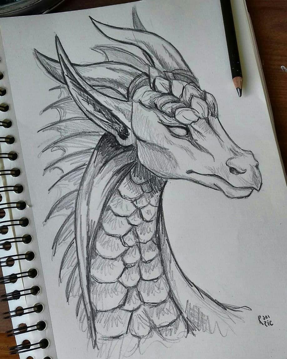 "Photo of @drawziic on Instagram: ""Dessin Dragon???????? crayon à papier +Crayon DERWENT SKETCHING Medium Wash 4B . . . #drawing #dessin #dragon #crayon #illustration #cute"" #skizzenkunst"