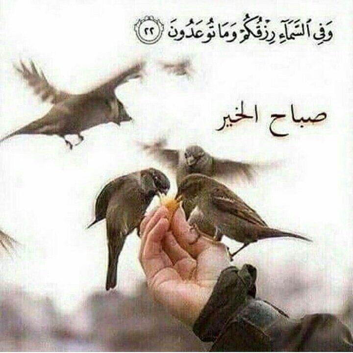 بنت اﻷردن Mashaqba12 Twitter Good Morning Arabic Good Morning Beautiful Cute Good Morning