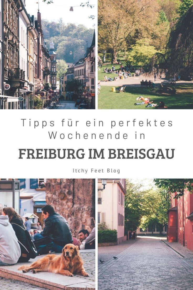 Freiburg Urlaub: Tipps für ein entspanntes Wochenende ...