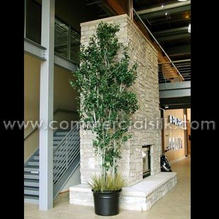 Decorative Plants For Office Using Artificial Aspen U0026 Birch Trees!! Http:/