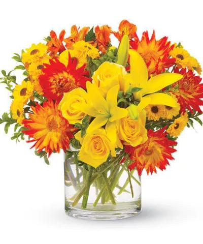 Pin by Mancuso's Florist, Inc. on Dahlias & Chrysanthemums