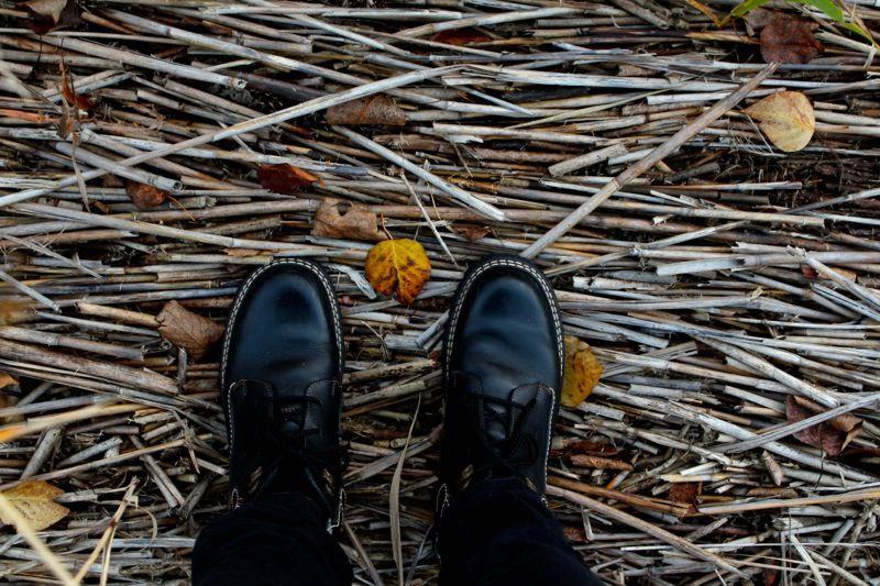 Löytöjä, kirppispohdintaa ja hiukan kritiikkiä