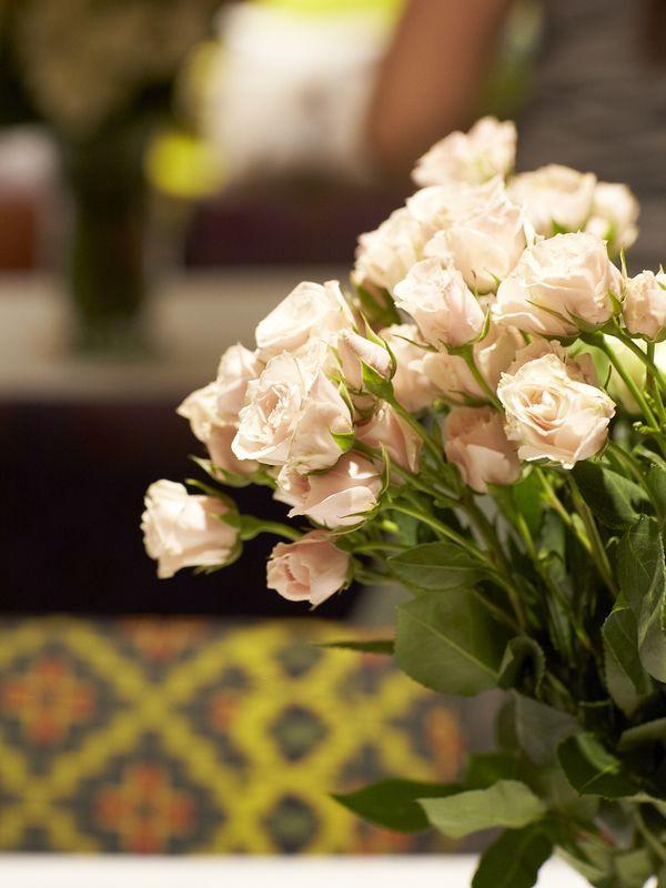 Små roser