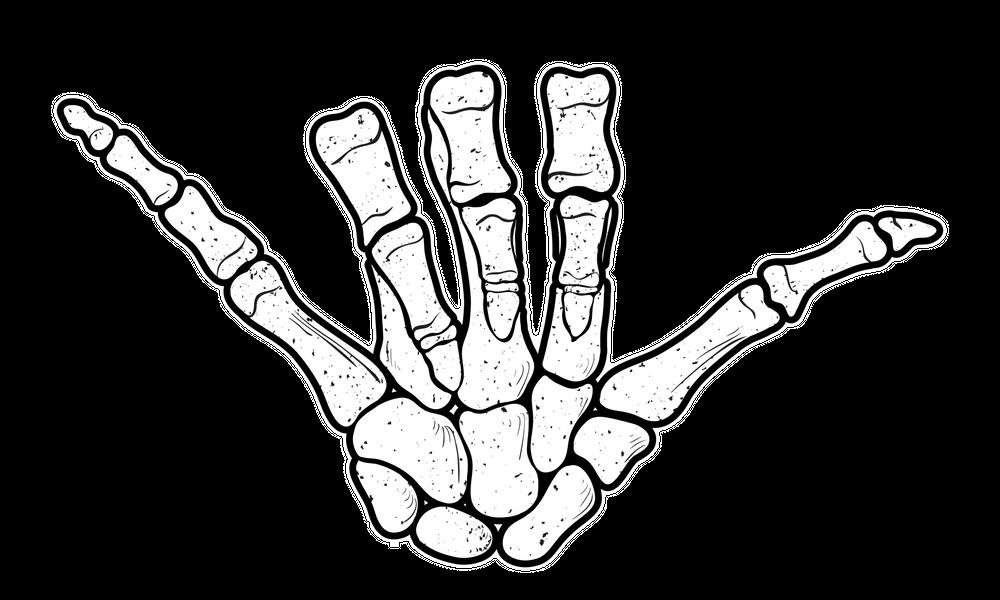 Surf Shaka Sign Hand Drawn Illustration Of Hand Skeleton Sticker By Archiwiz White Background 3 X3 Skeleton Hand Tattoo Skeleton Sticker Shaka Sign