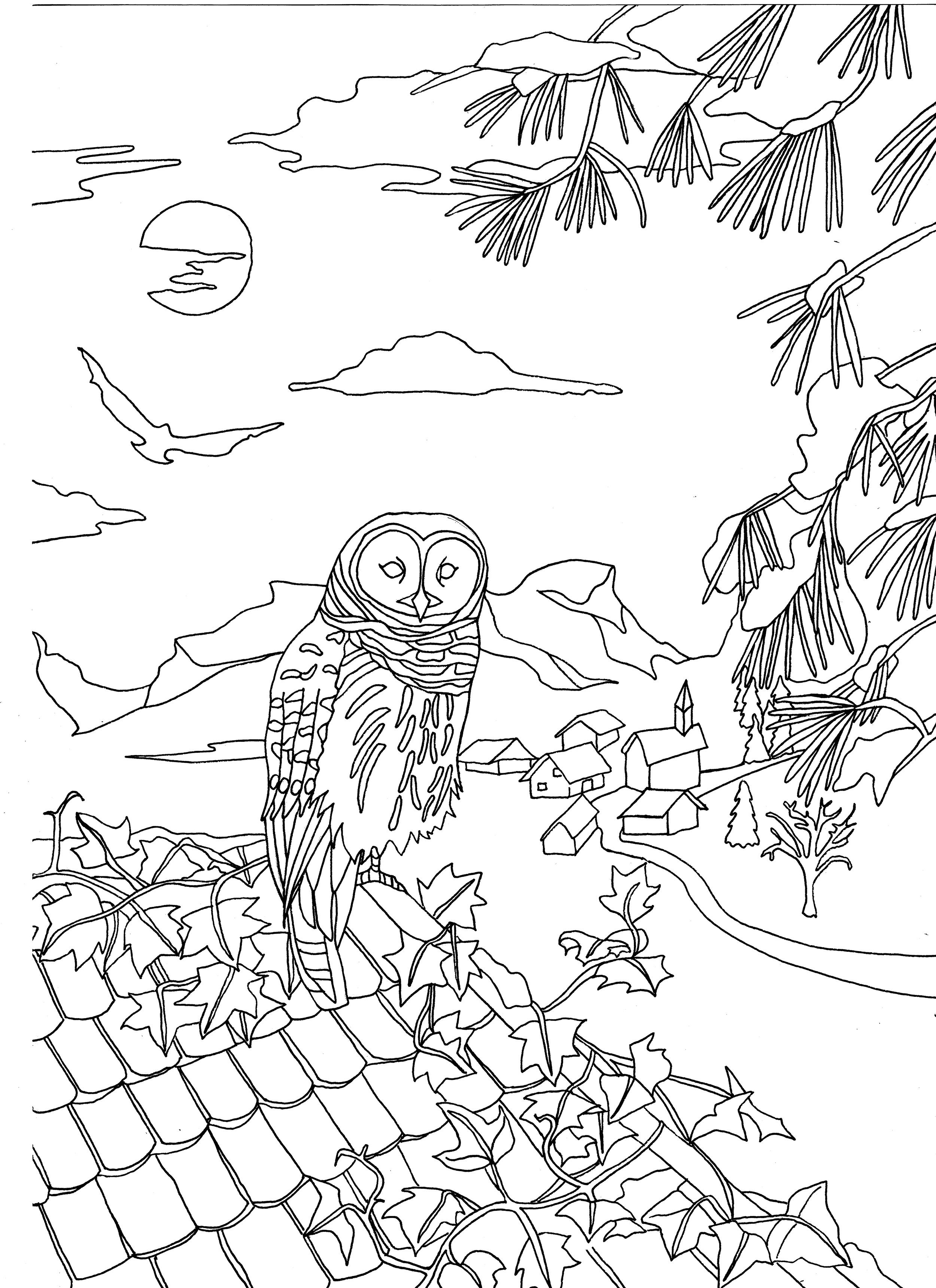 Adulting coloring pages ~ Free coloring page coloring-adult-owl-on-a-roof-by-marion ...