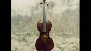 Saltillo Saltillo Trip Hop Discover Music