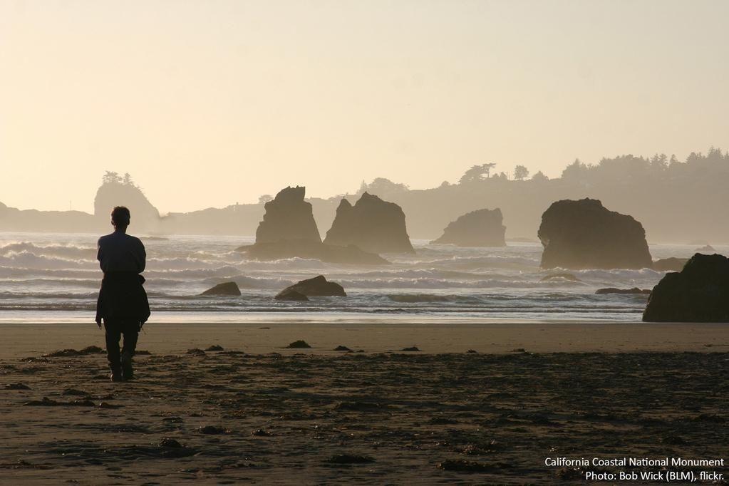 """Live in the sunshine, swim the sea, drink the wild air."" -Ralph Waldo Emerson"