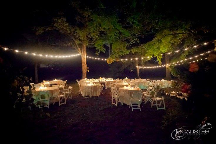 More string lights wedding pinterest reception and wedding more string lights aloadofball Images