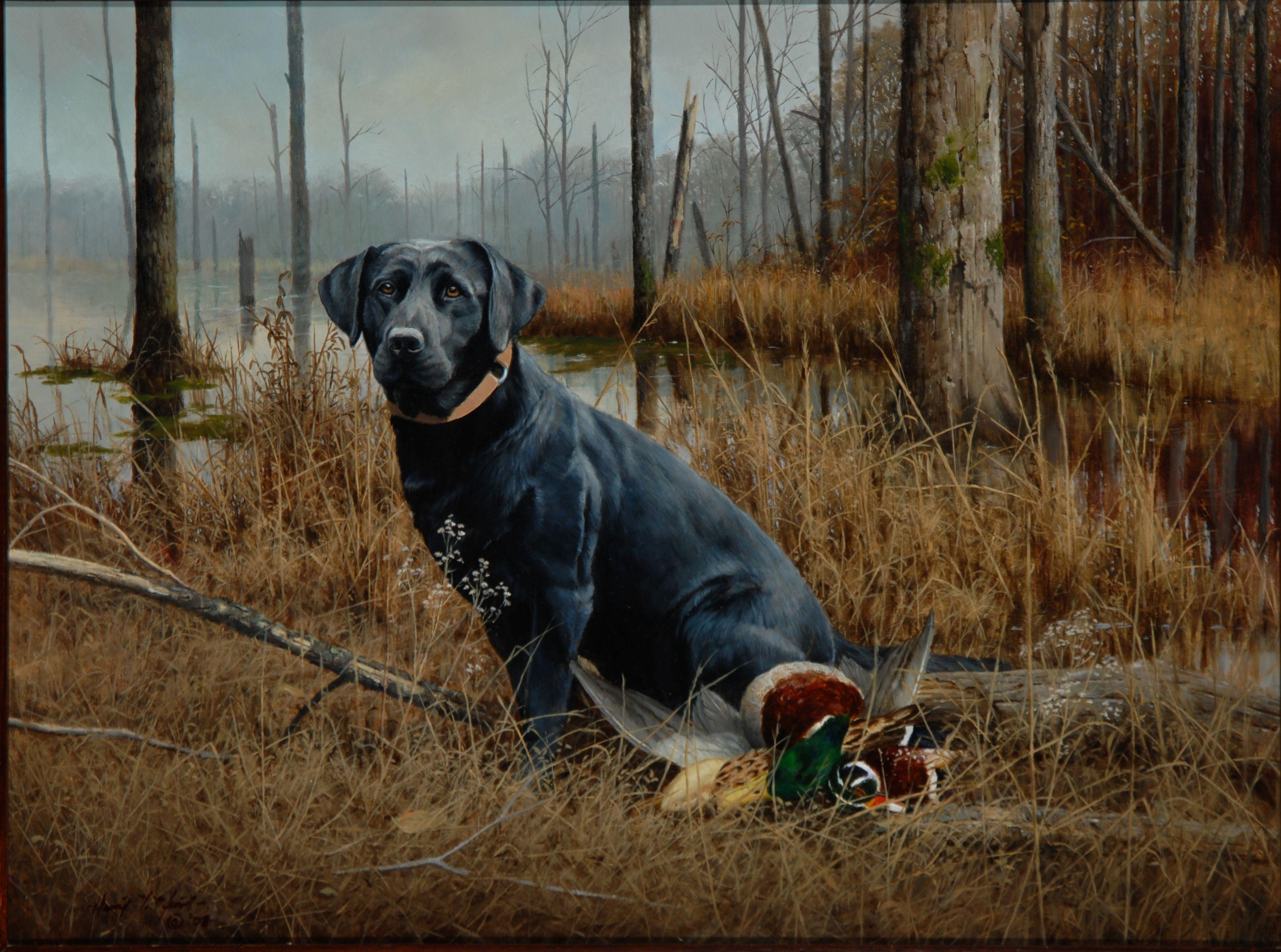 DU Lab | Ducks Unlimited / Labs | Pinterest | Wildlife art, Wildlife ...