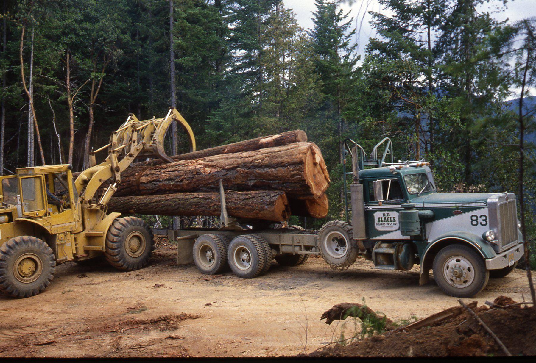 Peterbilt 359 Logger Model Truck Kits Peterbilt Trucks Cool Trucks